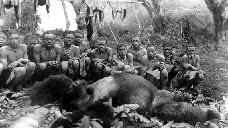 Un gruppo di indigeni africani accanto ad un gorilla morto, nel Gennaio del 1932