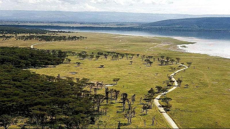 Scogliera del babbuino. Parco Nazionale lago Nakuru