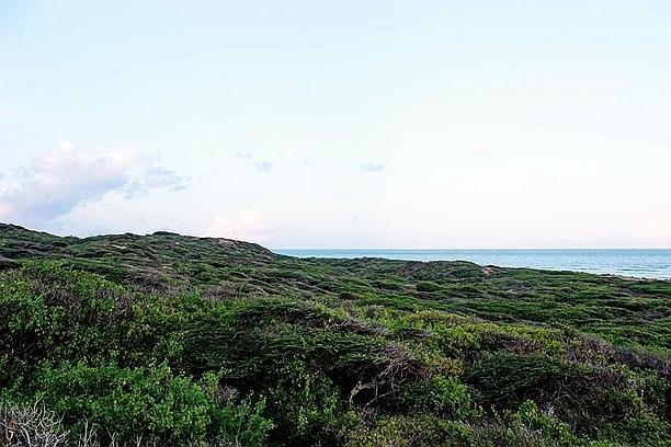 Takwa Ruins Coast