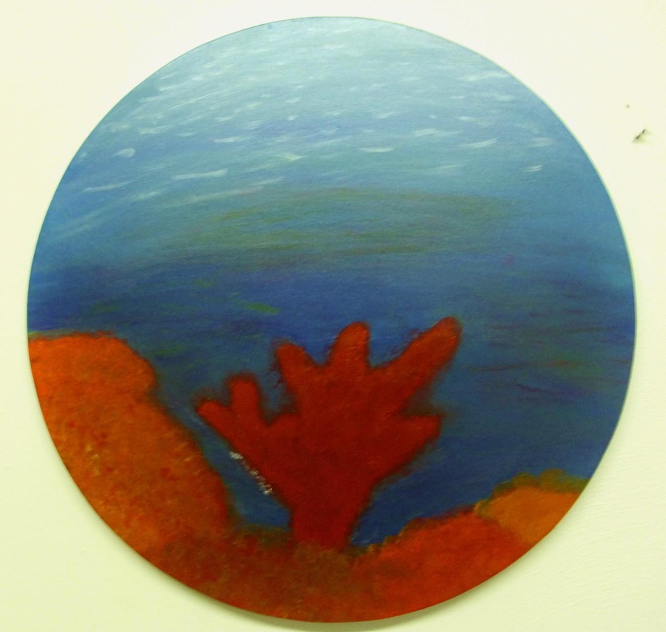 Korall No 1