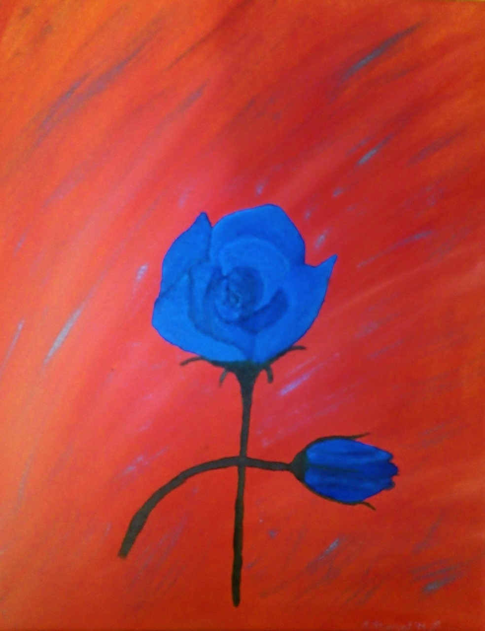 Blue Rose No 1