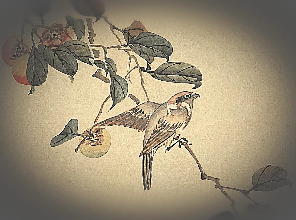 Haiku, versi, componimenti giapponesi