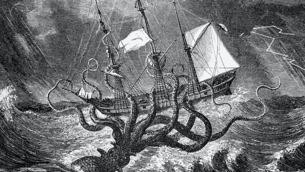 英語でイカは何という? Squid Cuttlefish Calamari の違い