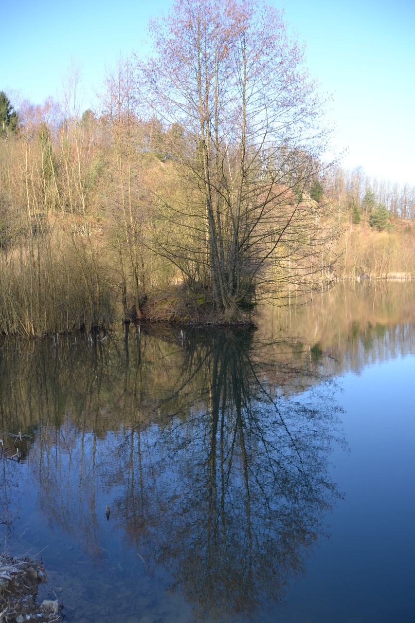 FFH-Habitat am Asberg