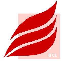 https://www.bcl-leipzig.de/Brandschutz-Consult/