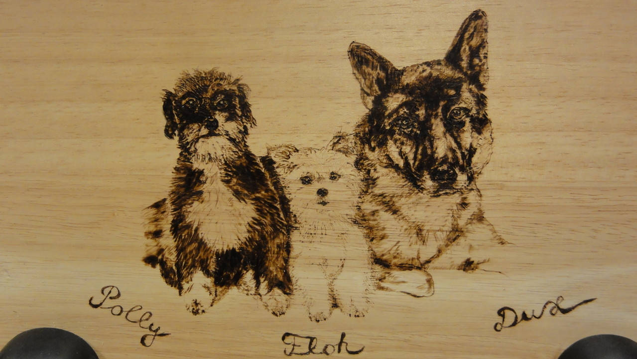 Leinengarderobe - Brand auf Holz mit drei Haken - Schäferhund, Pudelmischling und Yorki - 24 x 35 cm - 2013