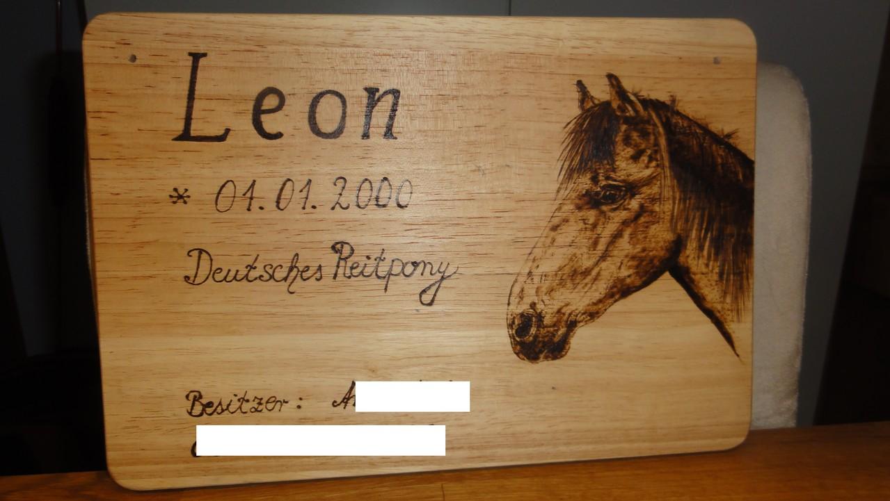 Boxenschild Pony.