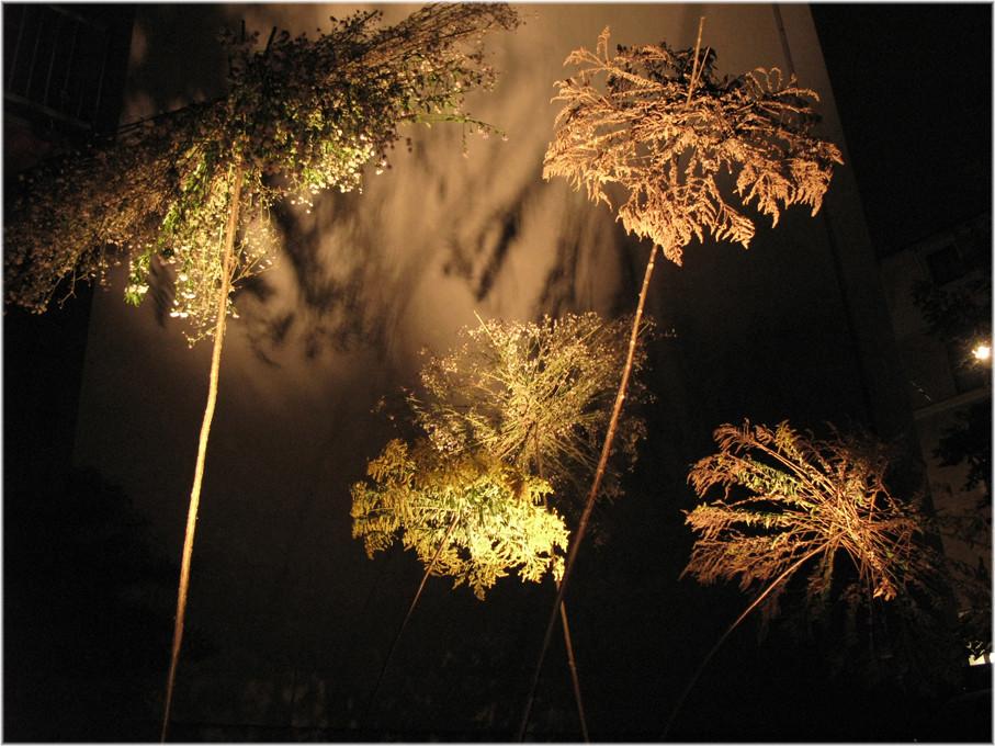 Schirme, Lange Nacht der Museen 2011, Wolfgang Wallner, Hall in Tirol