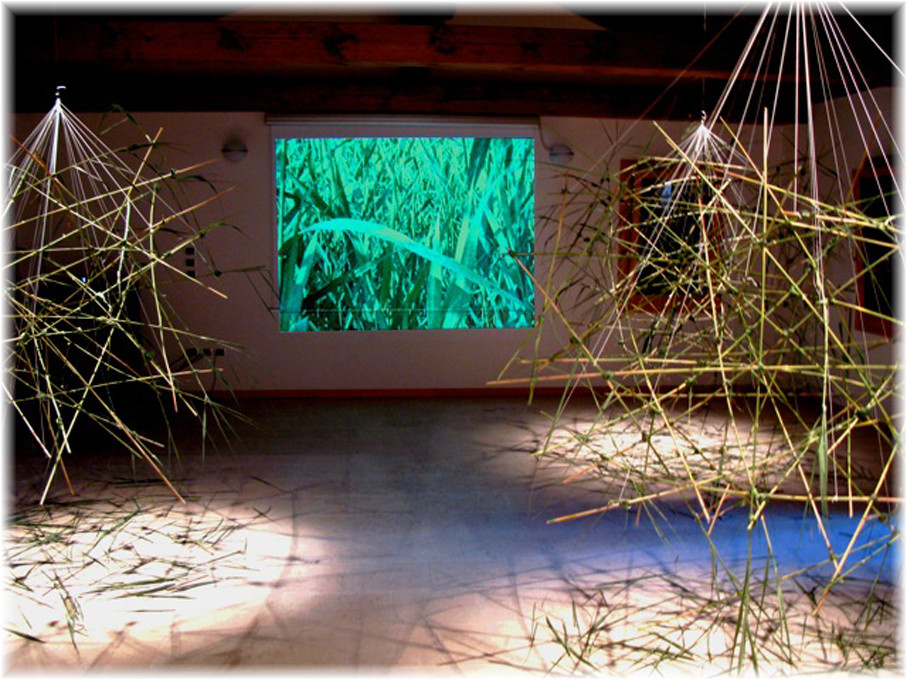 Video, Ton und Objektinstallation, Oasi Cervara, Treviso 2009, Wolfgang Wallner, Hall in Tirol