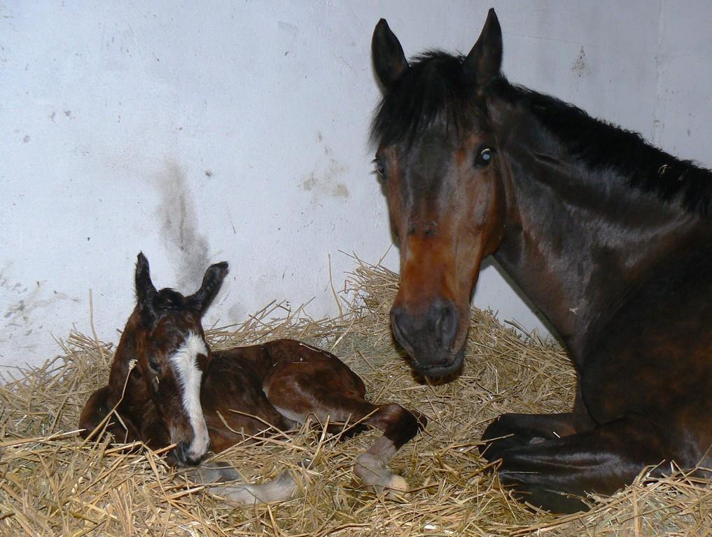 Mutter und Tochter eine Stunde nach der Geburt