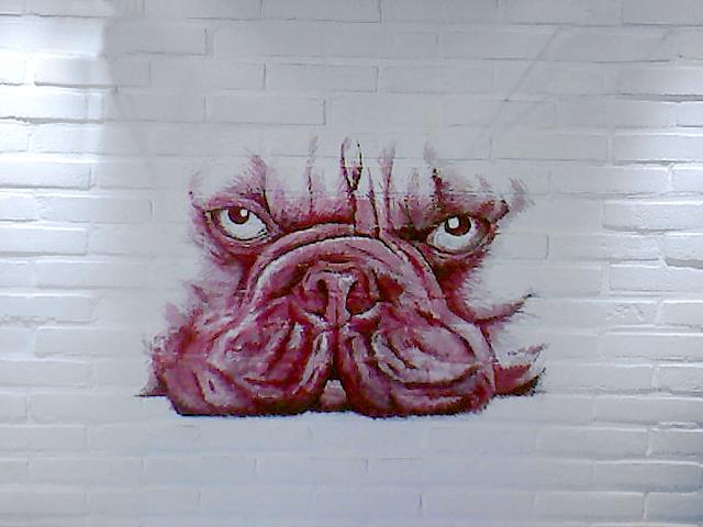 Muurschildering franse bulldog