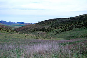 Biotope, Oulmès, Plateau central