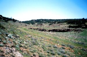 Biotope, Ifrane, Moyen Atlas central