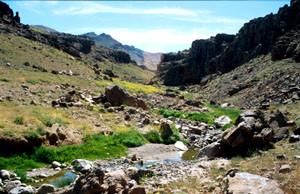 Habitat ripicole dans le Djebel Siroua, Anti-Atlas nord-oriental