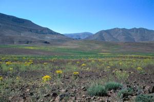 Habitat alticole, Plateau des lacs, Imilchil, Haut Atlas oriental