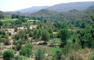 Biotope de berges du Haut Atlas central, versant sud du Tizi-n-Tichka
