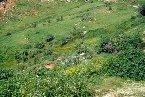 Station du Moyen Atlas, dans la région d'Aïn Leuh