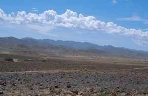 Écosystème de reg sur la morne meseta subdésertique du Djebel Sarrho, espace de vol de P. glauconome