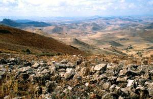 Habitat à ssp. colombani, rebords du Plateau d'Ito, Moyen Atlas central