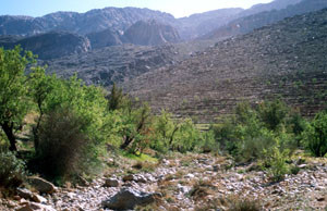 Biotope, Tizi-n-Tarakatine, Anti-Atlas sud-occidental