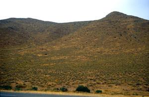 Habitat, région d'El Aioun, Atlas Tellien