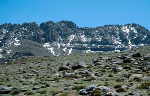 Habitat alticole de la ssp. mauretanicus, Djebel Siroua, Anti-Atlas nord-oriental