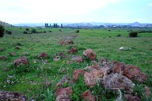 Biotope atlasique ouvert, Azrou, Moyen Atlas central