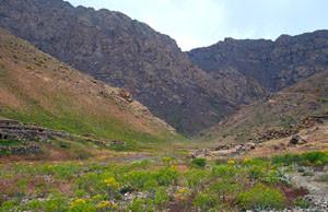 Habitat alticole, Plateau de l'Oukaïmeden, Haut Atlas central