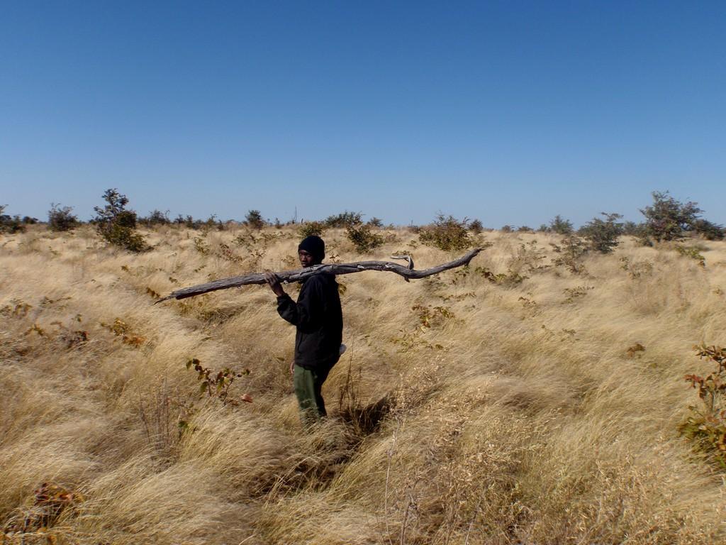 Mon guide, Delta de l'Okavango, Botswana