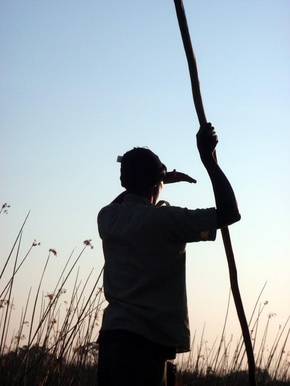 Mon guide scrute les hautes herbes pour repérer les hippopotames, Delta de l'Okavango, Botswana