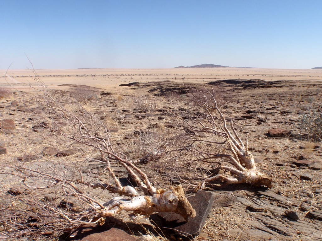 Namibie, entre Walvis Bay et Sesriem