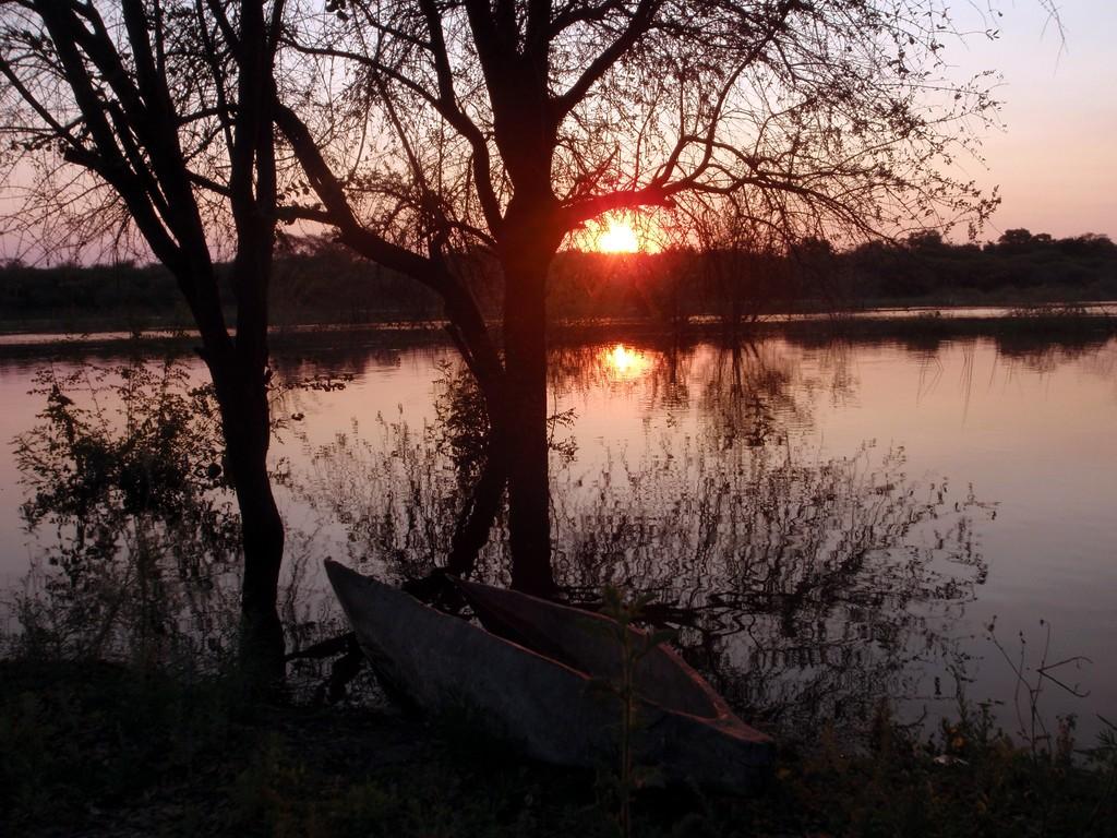 Campement de Maun, Delta de l'Okavango, Botswana
