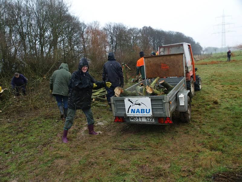 Transport von dickeren Ästen zur Totholzmauer