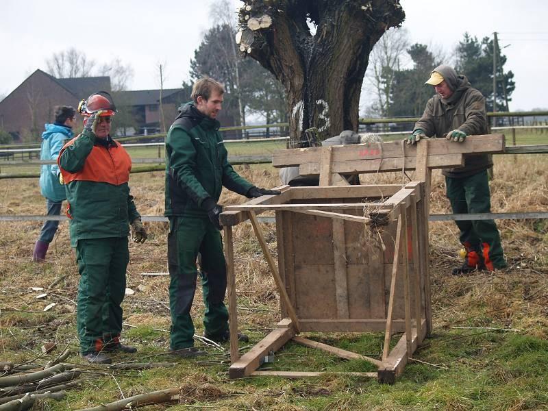 """Der Bock dient zur Hilfe für sicheres Schneiden am """"Kopf"""" des Baumes"""