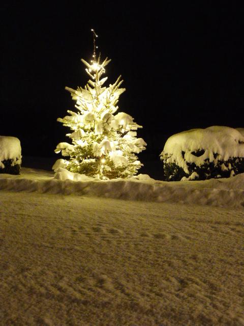 Winter, Schnee und Lichterglanz