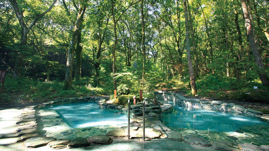 森林浴も長湯も楽しめる露天風呂。
