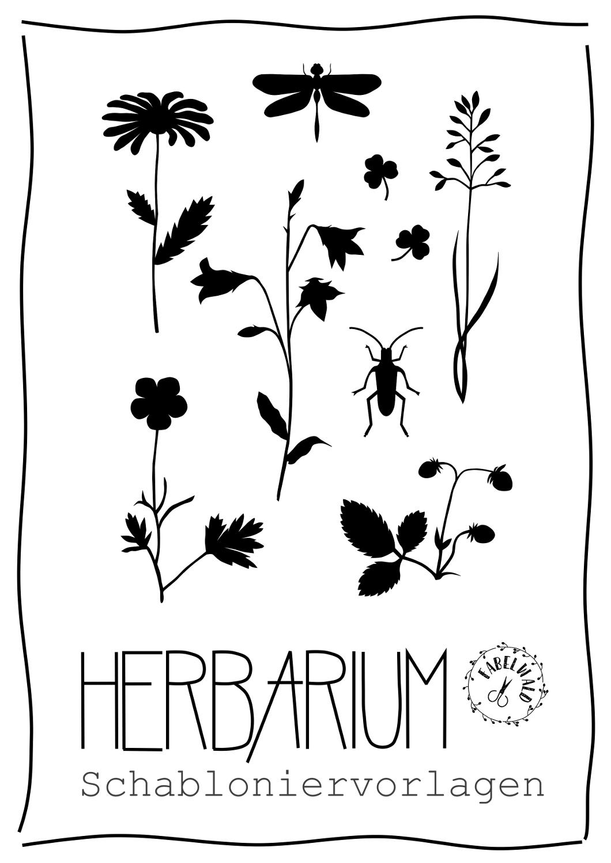 Herbarium Herbarium Vorlage Heilpflanzen Pflanzen 1