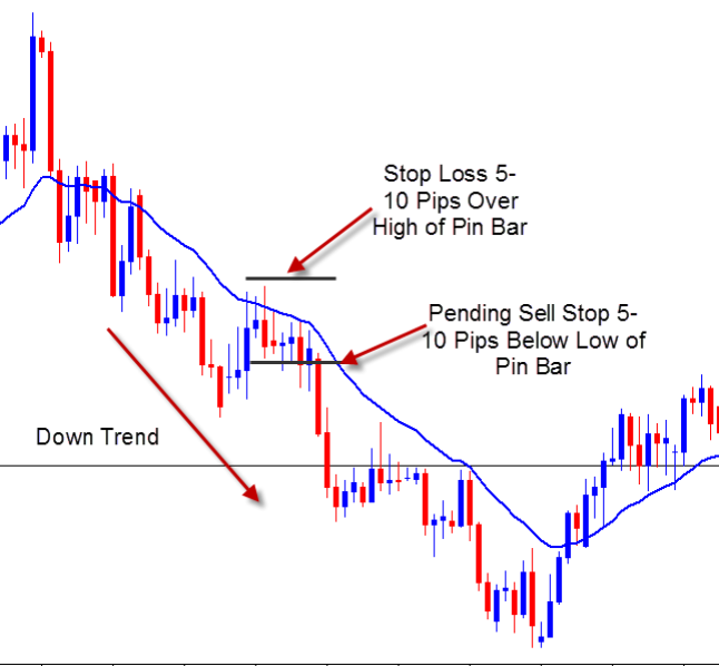 Pip Bar with moving average