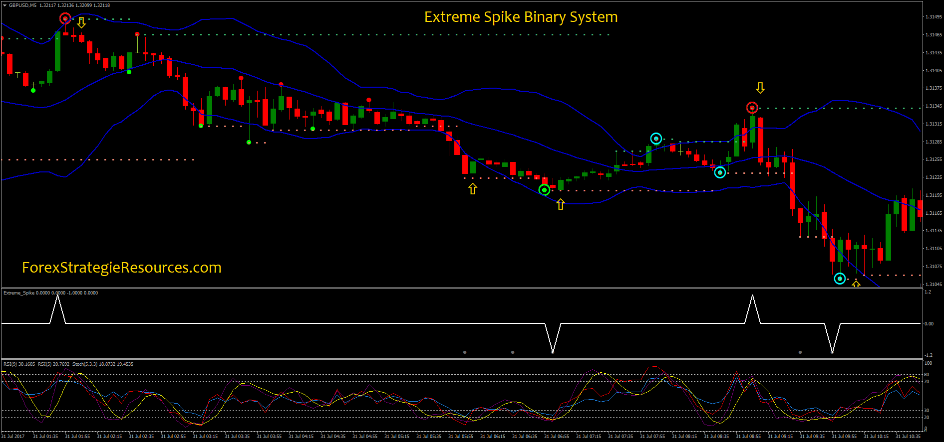 Binary options extreme trading system