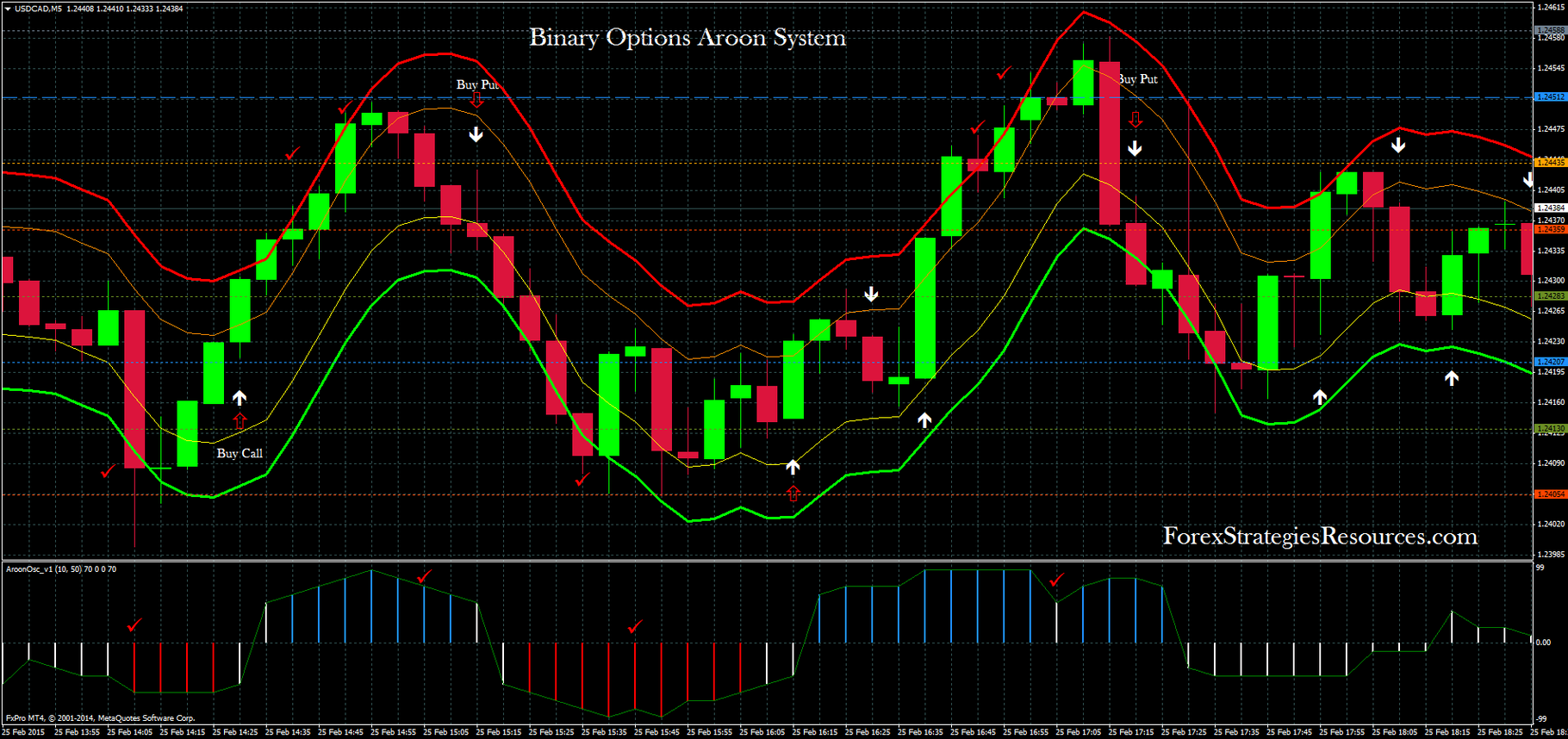 Binary options trading system