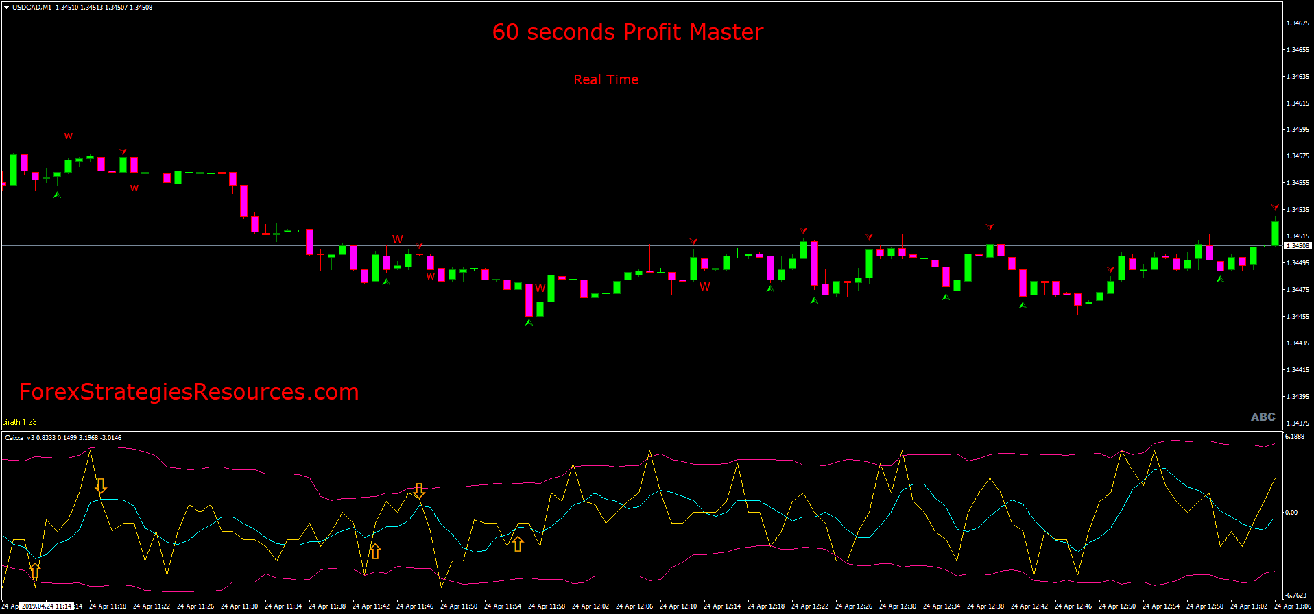 Master binary options