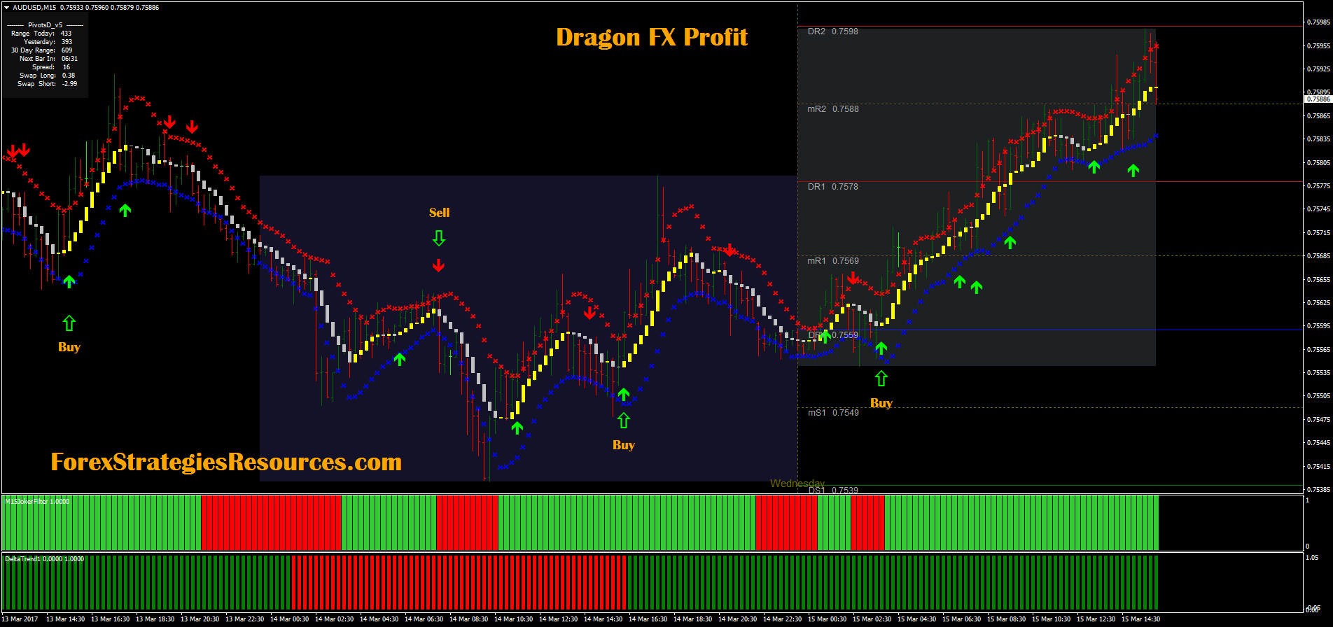 Binary options dragon