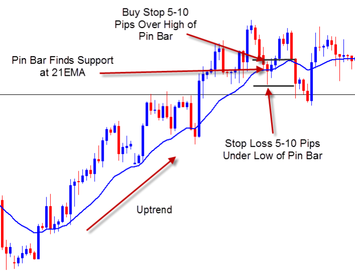 Pin Bar with moving average