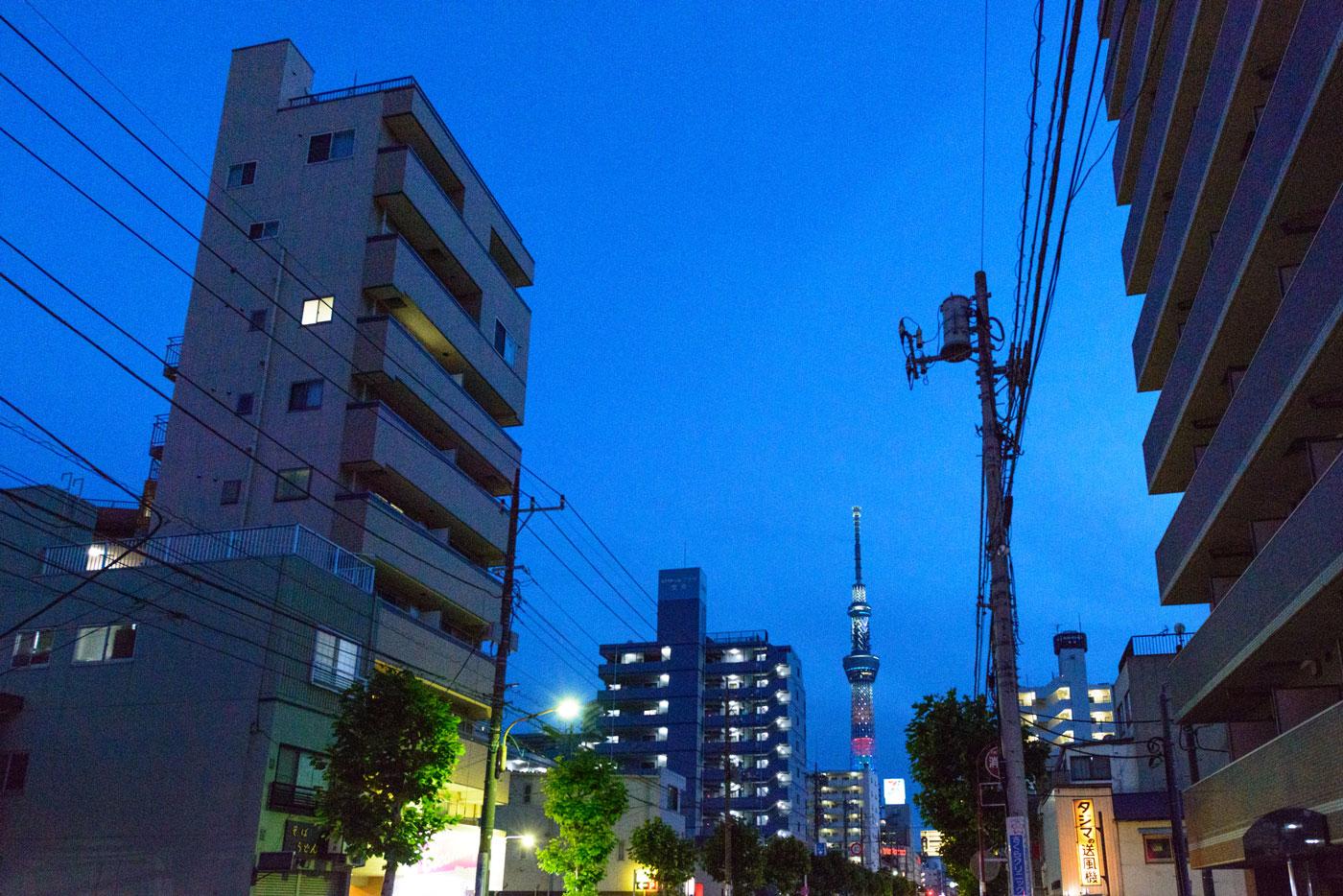 現地前「曳舟川通り」からの夜景