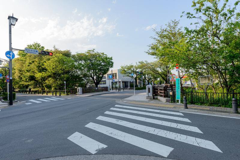 風の散歩道8(むらさき橋)