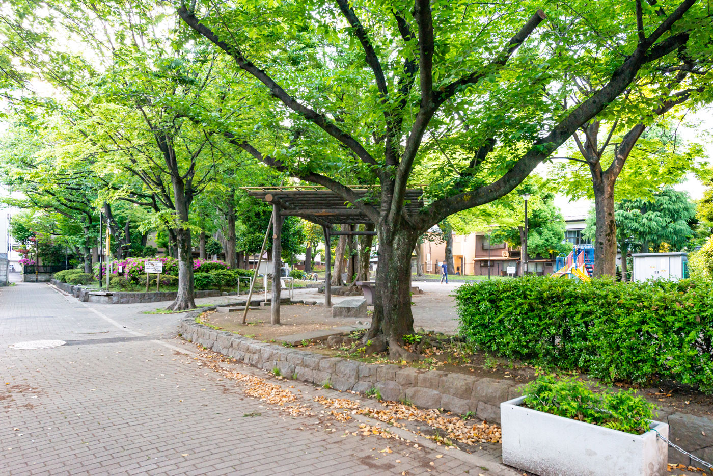 千住仲町公園(4m)