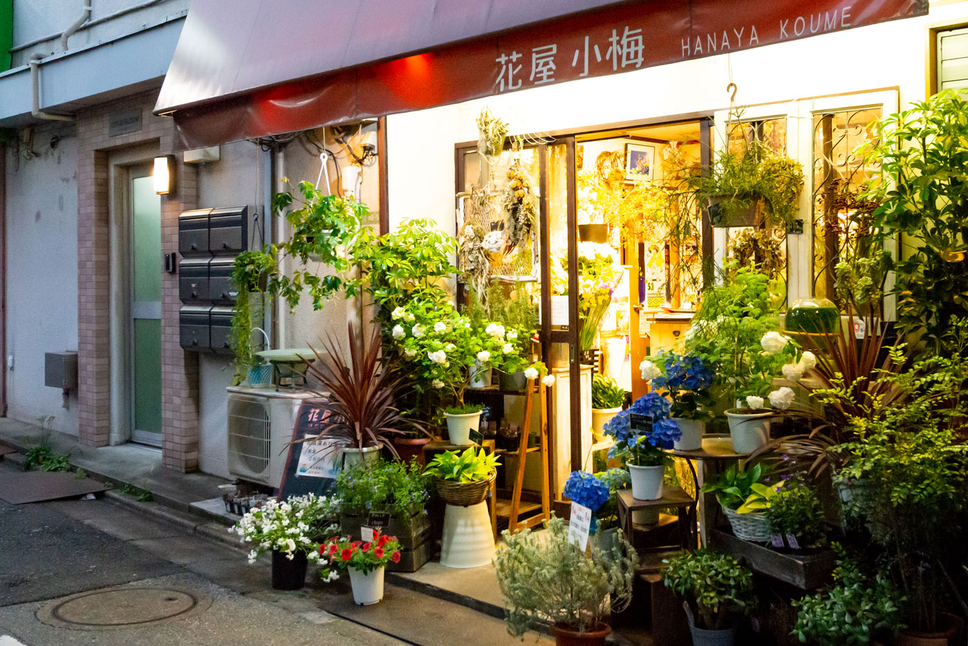 ミリオン通り入り口の花屋