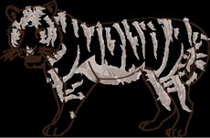 Tigre - feng shui