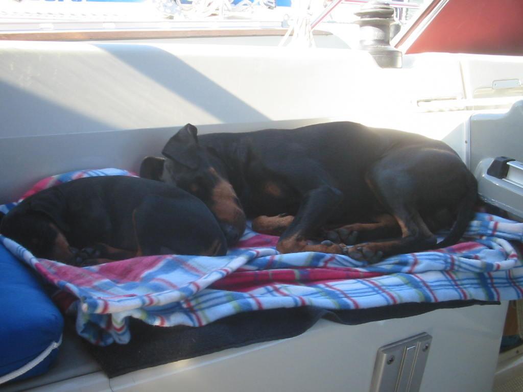 Ein Seetag macht müde