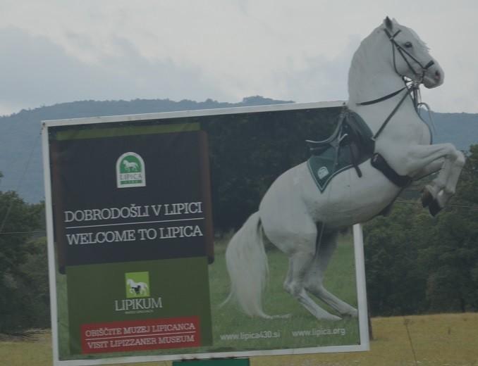 Gestüt Lipica (Slowenien)
